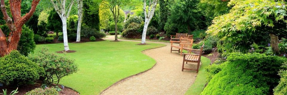 We specialise in commercial grounds maintenance